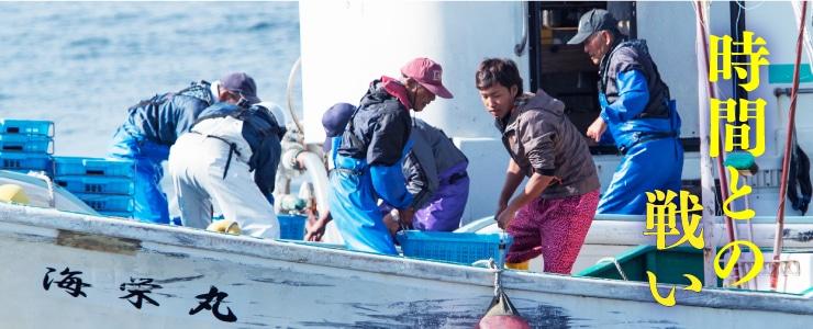 しらす漁は時間との闘い