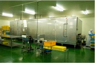 大型急速冷凍庫
