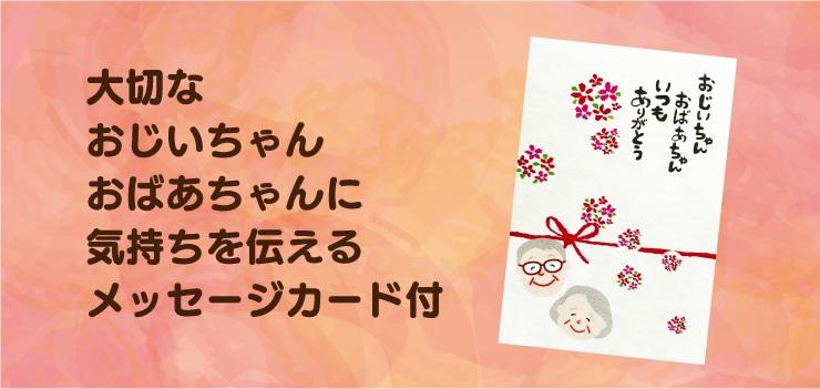 敬老の日メッセージカード画像