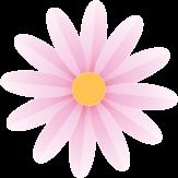 母の日用花装飾