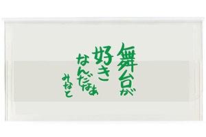 宝塚歌劇団桜木みなと様チケットケース