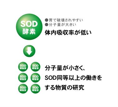 丹羽SODの開発