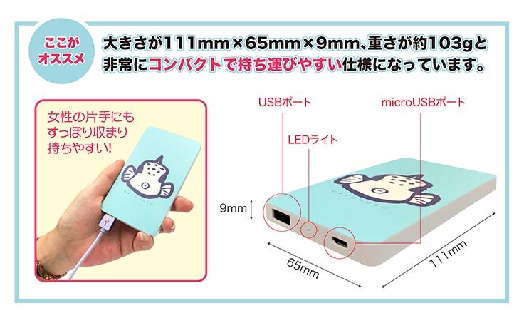 大きさが111mm×65mm×9mm、重さが約103gと 非常にコンパクトで持ち運びやすい仕様になっています。