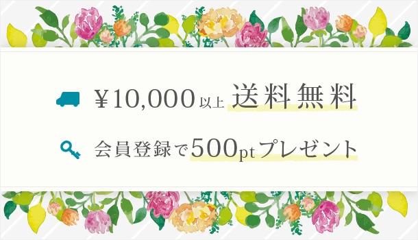 10,000円以上送料無料 会員登録で500ptプレゼント