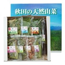 秋田県産天然山菜                         お試しセット(山菜9種)