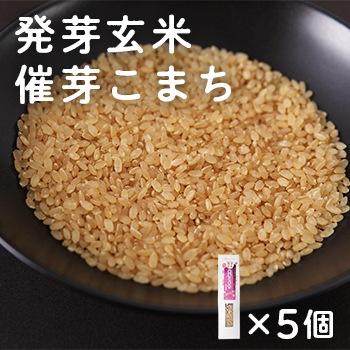 発芽玄米「催芽こまち」