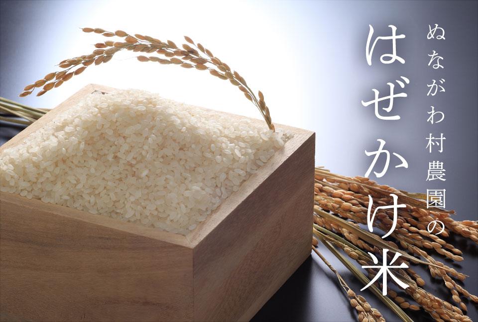 ぬながわ村農園のはぜかけ米