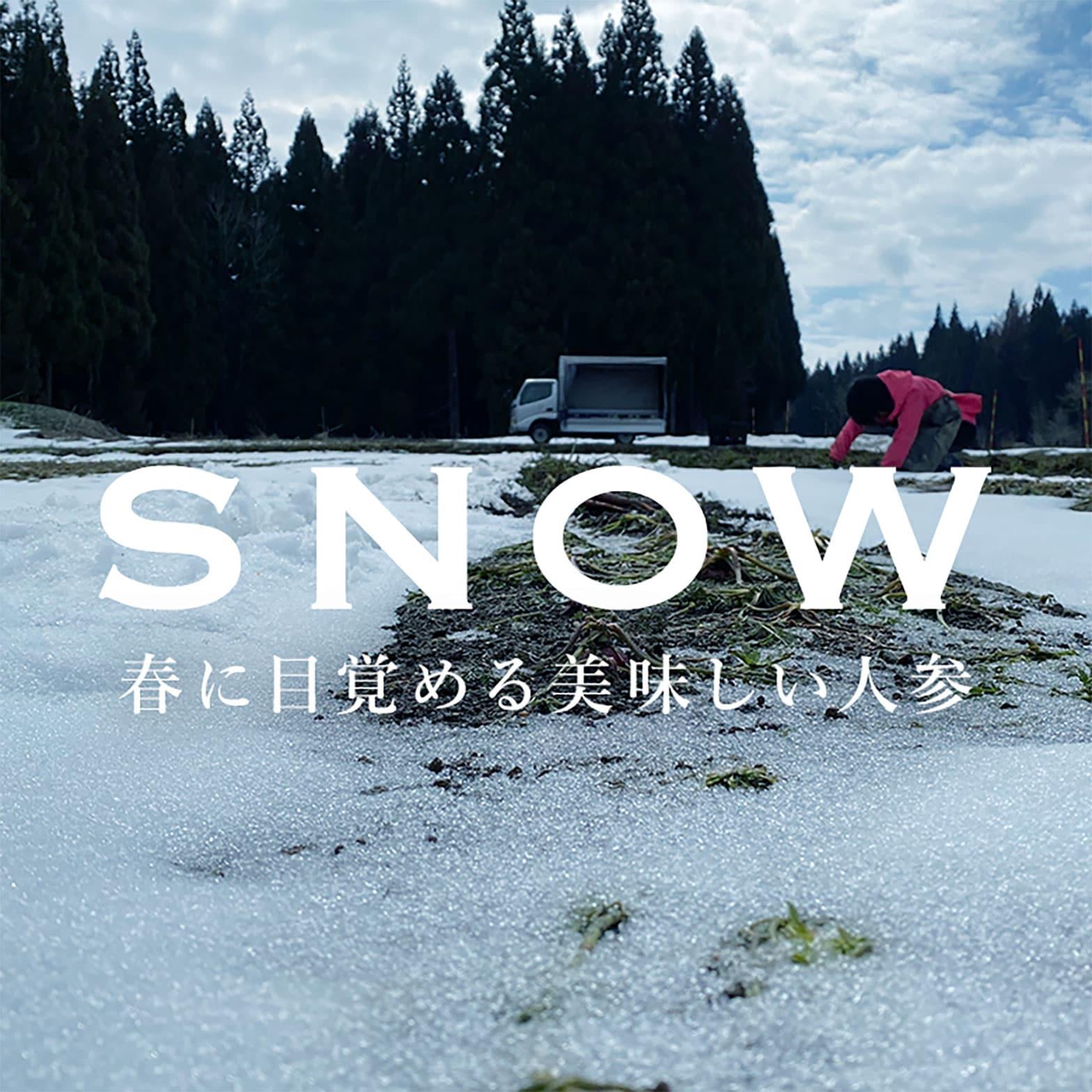 雪下にんじんとは