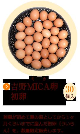 吉野MICA卵の初卵 30個 数量限定