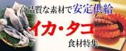 ■いかたこ特集
