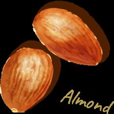アーモンド