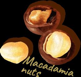 マカダミアナッツ