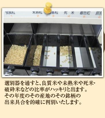 選別器を通すと、良質米や未熟米や死米・破砕米などの比率がハッキリと出ます。その年度のその産地のその銘柄の出来具合を的確に判別いたします。