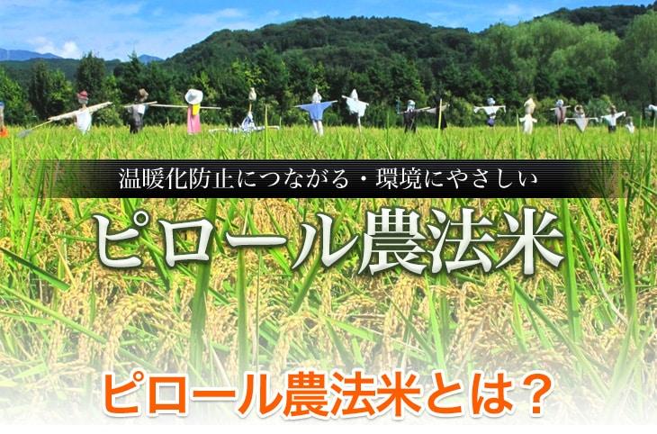 温暖化防止につながる 環境にやさしいピロール農法米