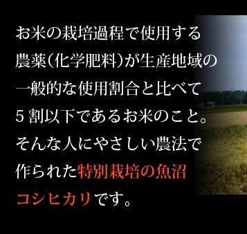 お米の栽培過程で使用する農薬(化学肥料)が生産地域の一般的な使用割合と比べて5割以下であるお米のこと。そんな人にやさしい農法で、作られた特別栽培の魚沼コシヒカリです。