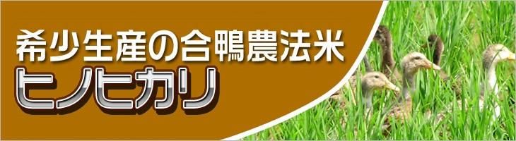 無農薬栽培 合鴨米 ヒノヒカリ