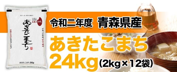 令和元年産(2019年) 秋田県産 あきたこまち 24kg