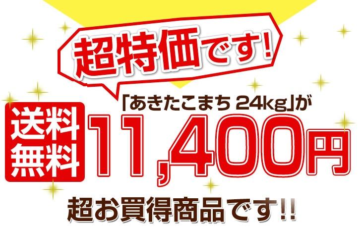 あきたこまち24kgが送料無料12200円超お買得商品です!!