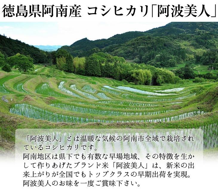 徳島県阿南産コシヒカリ「阿波美人」