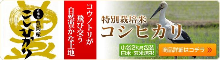 コウノトリが飛び交う自然豊かな土地が生んだ兵庫県豊岡産コシヒカリ