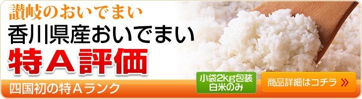 四国初の特A評価 香川県産おいでまい