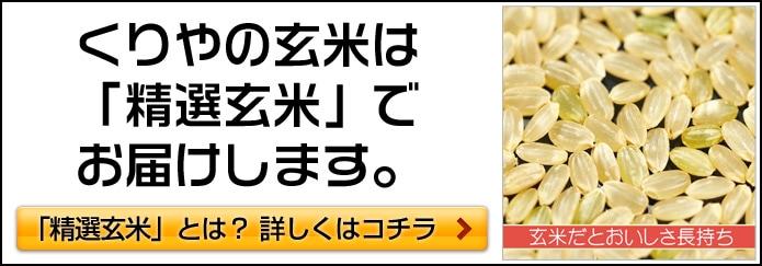玄米は、通常玄米ではなく精選玄米でのお届けになります。