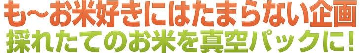 も〜お米好きにはたまらない企画 採れたてのお米を毎月お届け!