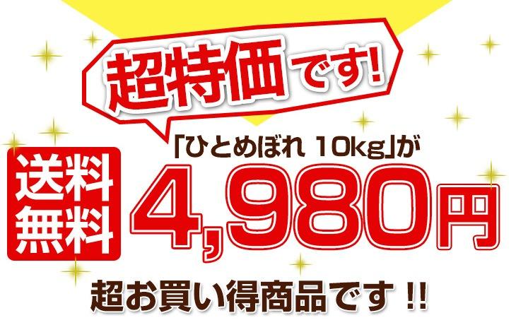 ひとめぼれ10kg 4980円