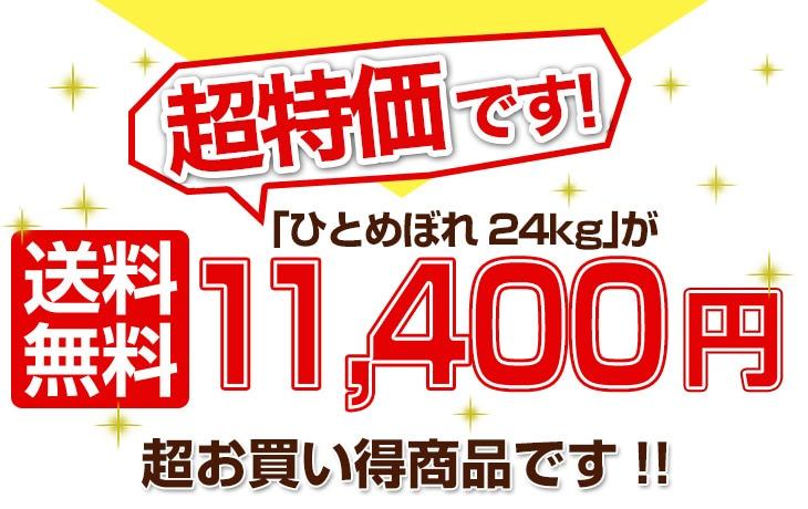 ひとめぼれ24kg 12200円