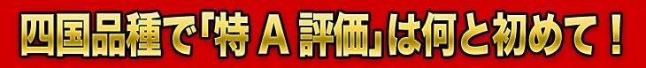 「米の食味ランキング」最高の「特A」評価