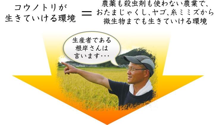 農薬も殺虫剤も使わない農業で、おたまじゃくし、ヤゴ、糸ミミズから微生物まで生きていける環境