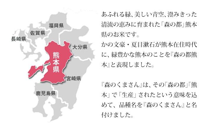 森の都熊本で生産されたという意味をこめて、品種名を森のくまさんと名付けました。