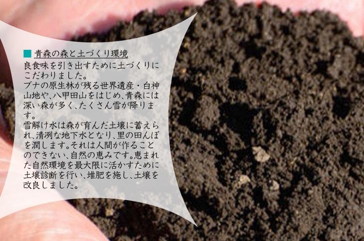 恵まれた自然環境を最大限に活かすために土壌診断を行い、堆肥を施し、土壌を改良しました。