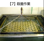 【7】 殺菌作業