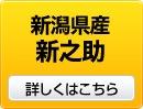 新潟県産新之助