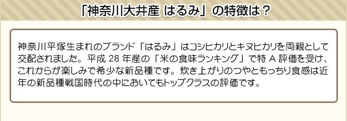 神奈川平塚生まれのブランド「はるみ」はコシヒカリとキヌヒカリを両親として交配されました。平成28年産の「米の食味ランキング」で特A評価を受け、これからが楽しみで希少な新品種です。炊き上がりのつやともっちり食感は近年の新品種戦国時代の中においてもトップクラスの評価です。