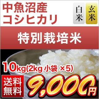 新潟県中魚沼産 コシヒカリ 10kg