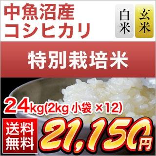 新潟県中魚沼産 コシヒカリ 24kg
