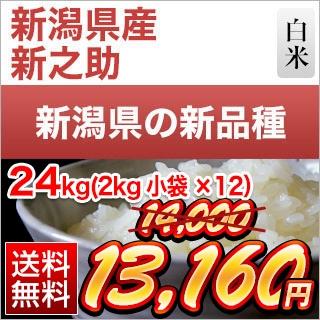 新潟県産 新之助24kg