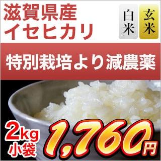 滋賀県産イセヒカリ 2kg