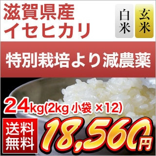 滋賀県産イセヒカリ 24kg