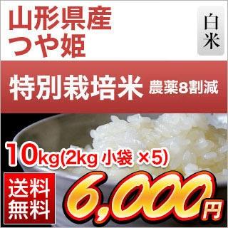 山形県産 つや姫 10kg