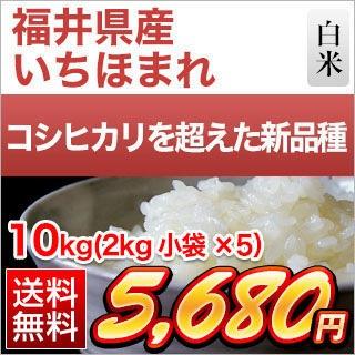 福井県産 いちほまれ10kg
