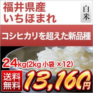 福井県産 いちほまれ24kg