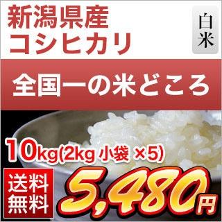 新潟県産 コシヒカリ 10kg(2kg×5袋)