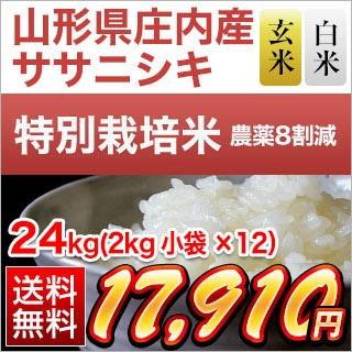 山形県庄内産 ササニシキ 24kg