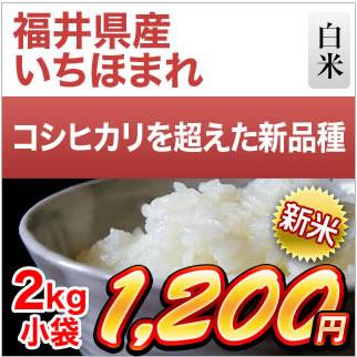 福井県産 いちほまれ2kg