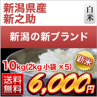 新潟県産 新之助10kg(2kg×5袋)