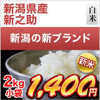 新潟県産 新之助 2kg