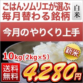 福井県産 つきあかり10kg